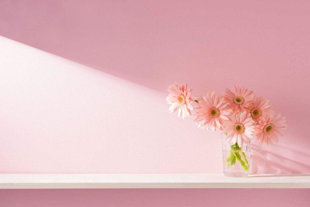 tinteggiature da interni rosa interni decorati